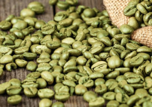 svetol-green-coffee-beans-300x211